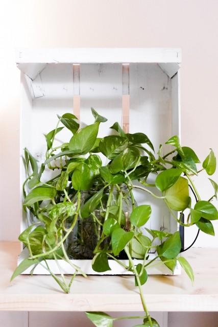 cassetta di legno di recupero verniciata bianco con piante per decorare mensola in mansarda