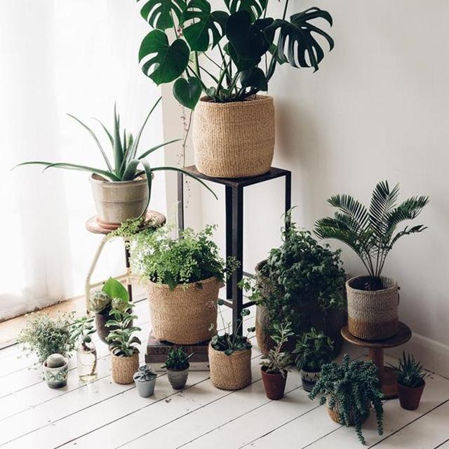 cesto-in-materiale-naturale-usato-come-porta-piante-idea-per-il-balcone