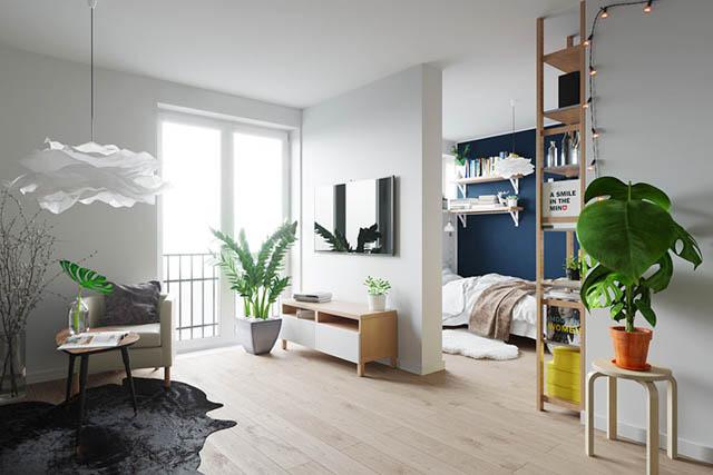 home-tour design appartamento piccolo giovanile con piante che arredano