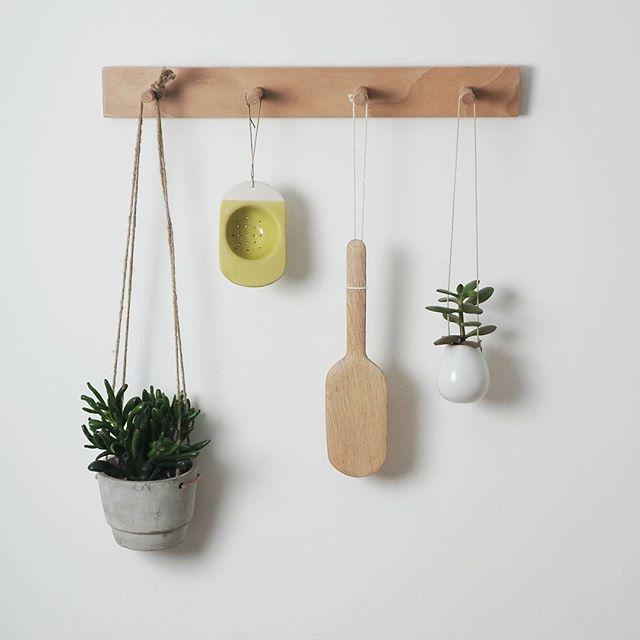 appendiabiti usato come porta piante grasse