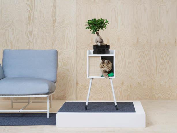 casetta bianca con gambe per gatti